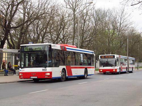 man bus autobus olsztyn mpk nl313 zdzit