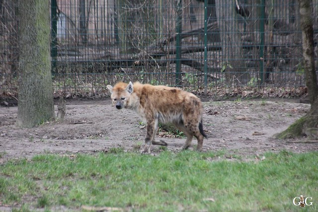 1. Feiertag im Tierpark Berlin39