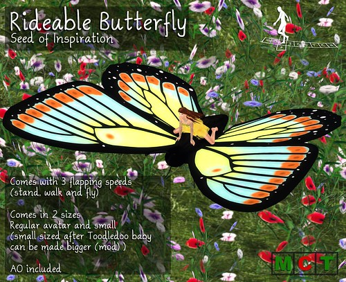 Rideable Butterfly SOI