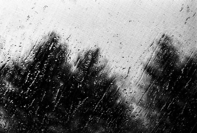 Through The Weeping Glass # 4