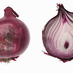onions-0087