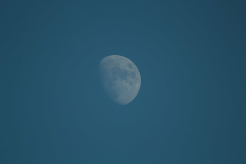 Winter daytime moon