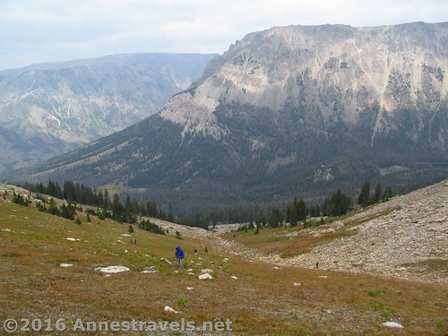 Upper reaches of the meadows, not long before I sighted the summit block. White Rock Northeast Slopes, Wyoming