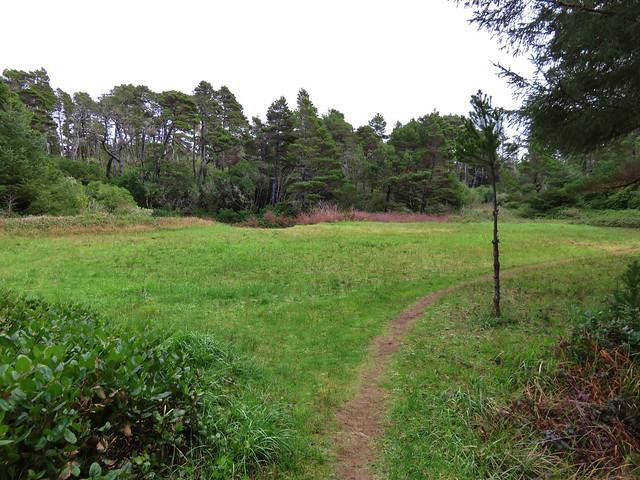 Bolduc's Meadow