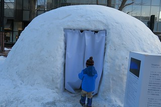 Art igloos