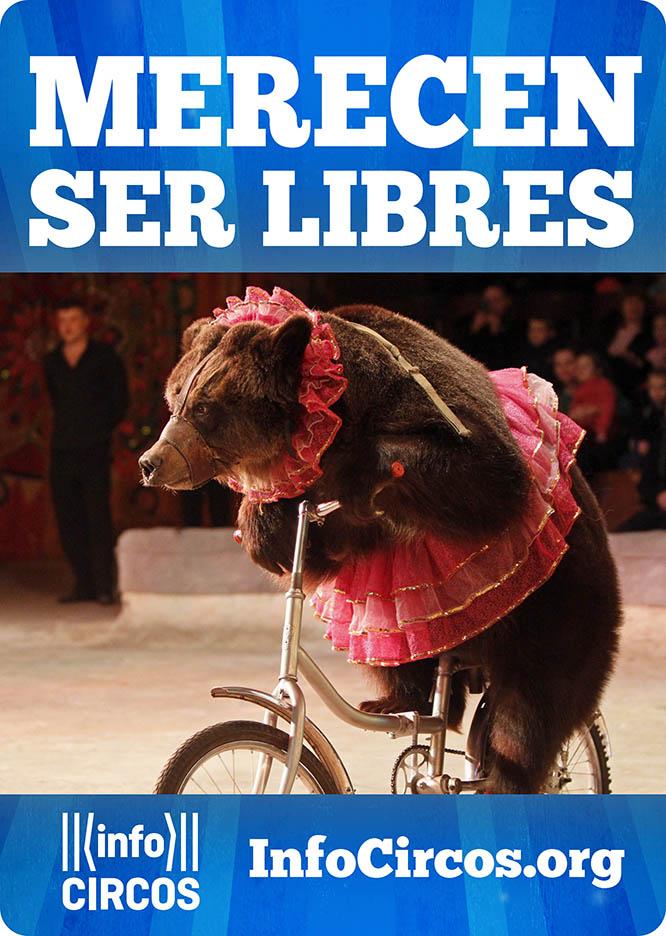 Convocan una concentración contra los circos con animales en Cartagena