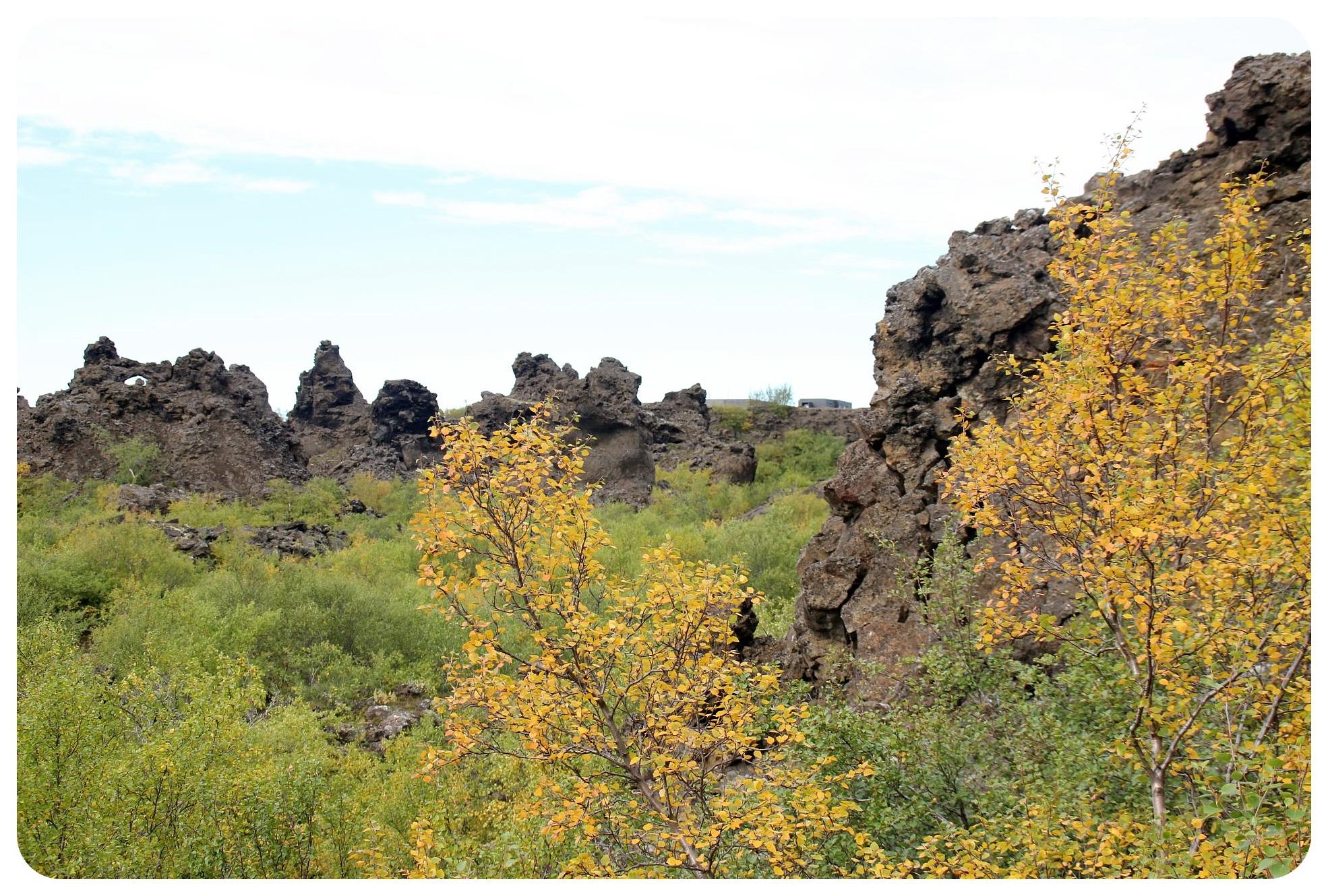 dimmuborgir rocks iceland