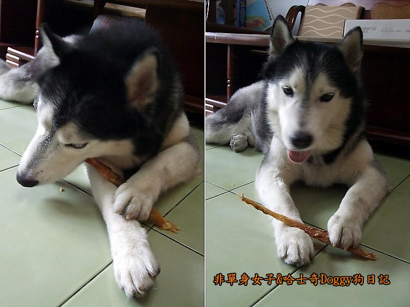 哈士奇Doggy愛狗零食08
