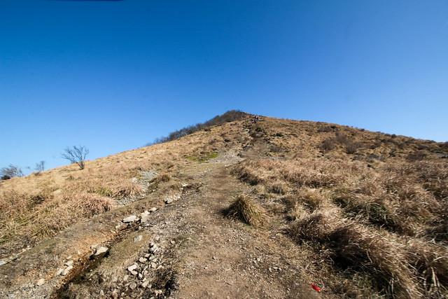 20141122-武奈ヶ岳&京都ライトアップ-0229.jpg