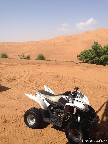 desert (2)
