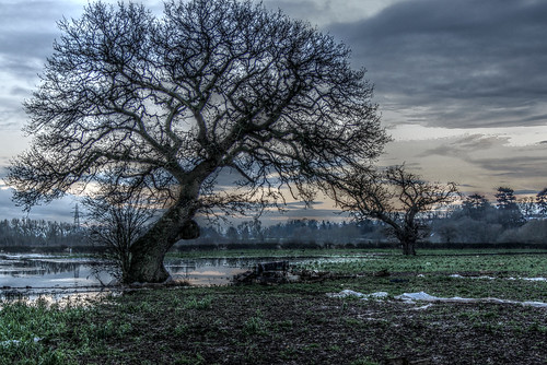 Flooded fields in Hallow 2
