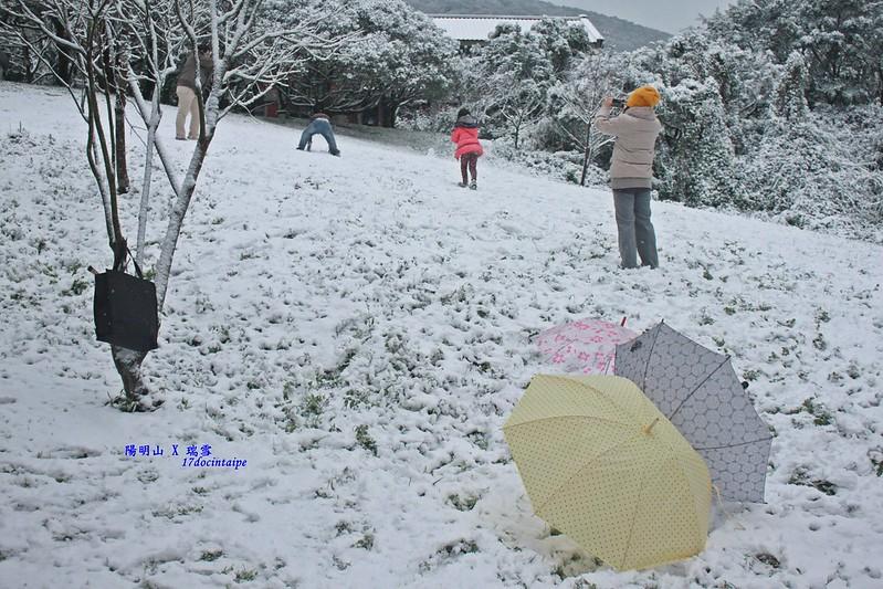 2016-台北陽明山-瑞雪-難得一見的雪白山景-17度C隨拍 (57)