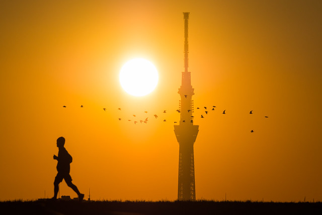 20160111_05_Sunset and Tokyo Sky Tree