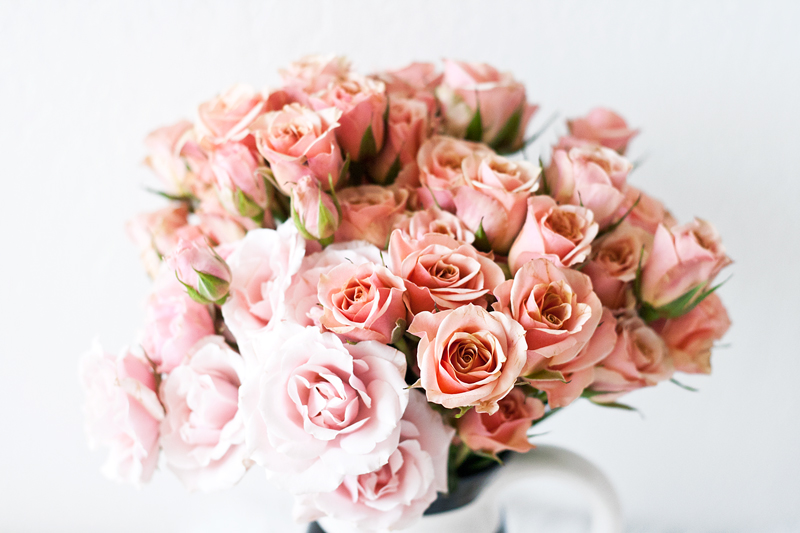 04sprayroses-roses-bouquet-blooms