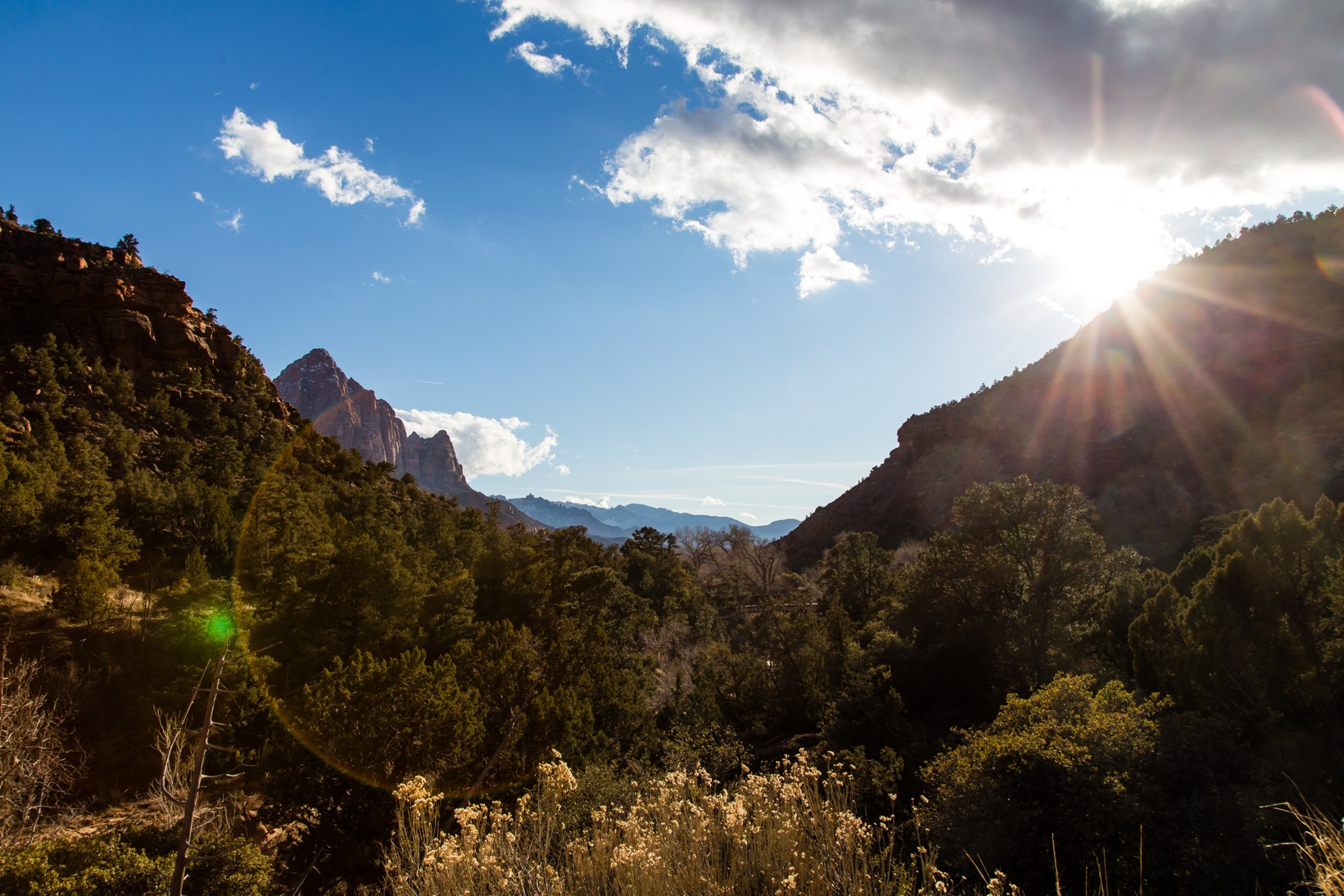 Zion National Park-9530-2