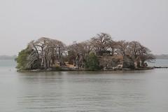 James island (Kunta Kinteh Island, Unesco world heritage) ,  the Gambia