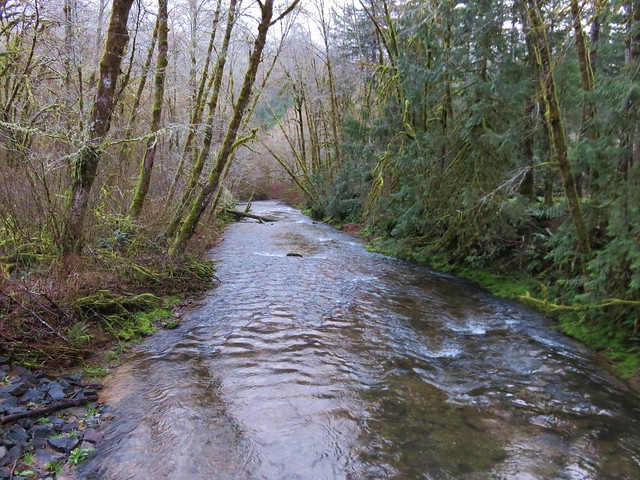 Whittaker Creek