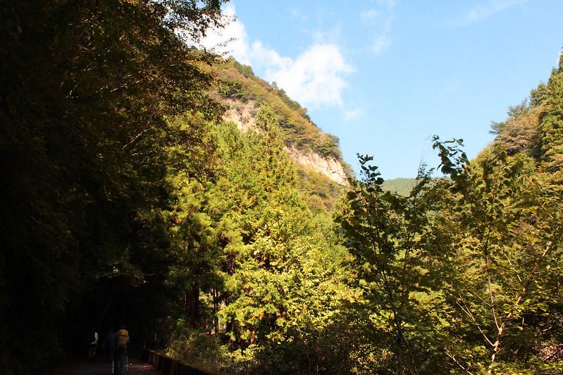20101023-川苔山-0011.jpg