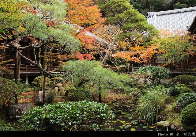 京都-永觀堂092