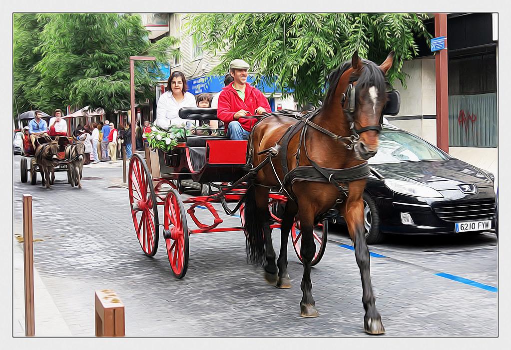 caballos en la calle grande