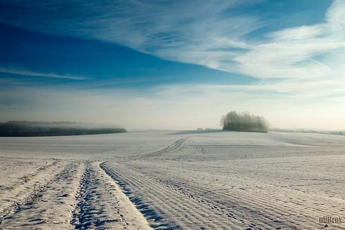 winter fog germany landscape bayern deutschland bavaria haze nebel outdoor jahreszeit himmel wolken landschaft oberumbach pfaffenhofenanderglonn
