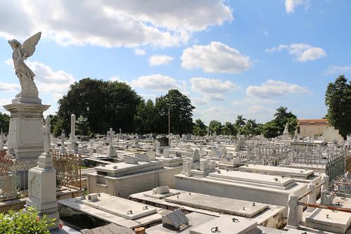Colon Cemetery, Havana