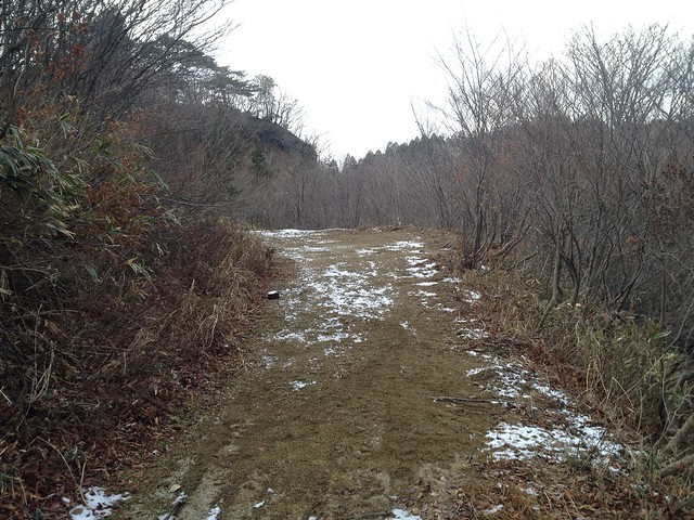小島山~ムネ山 林道
