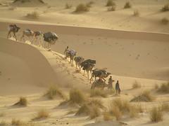 Mauritania 026