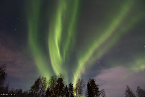 Northern Lights at Rovaniemi