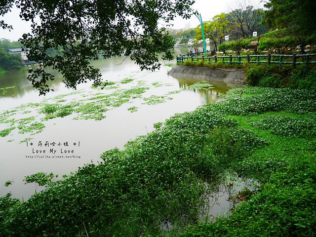 新竹一日遊景點青草湖 (14)