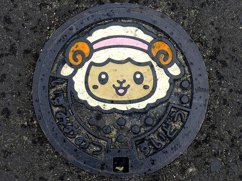 Izumiotsu Osaka, manhole cover 3 (大阪府泉大津市のマンホール3)