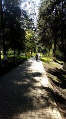 Vatra Dornei Park Romania
