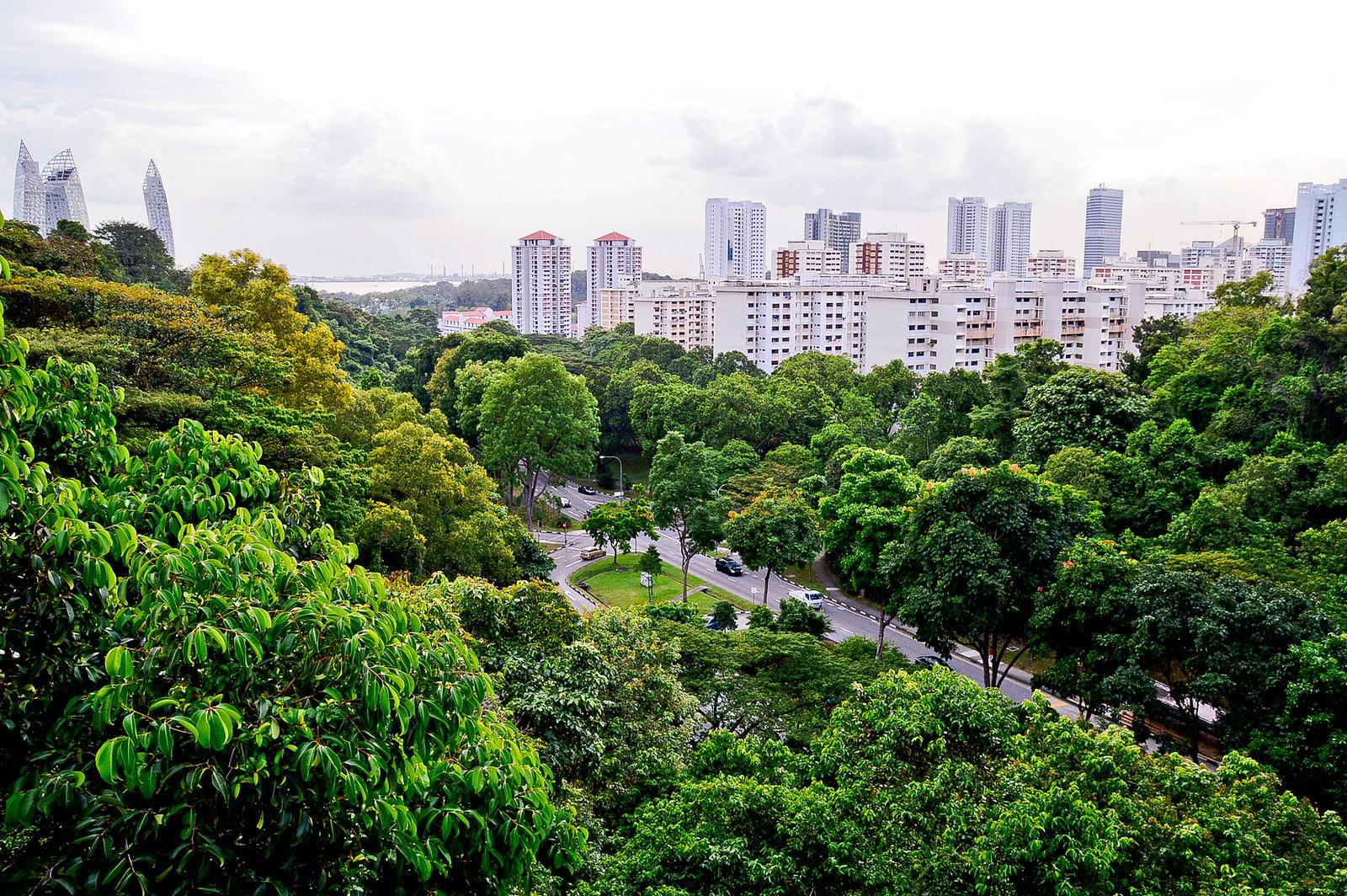 Mount Faber, Singapore 2016