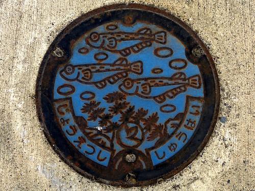 Joetsu Nigata, manhole cover 3 (新潟県上越市のマンホール3)