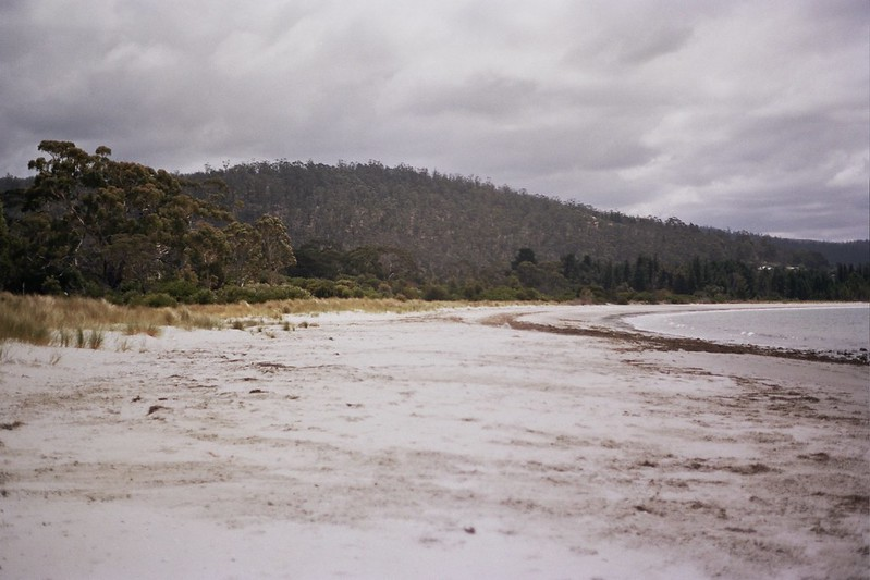 Tasmania // Schorlemädchen