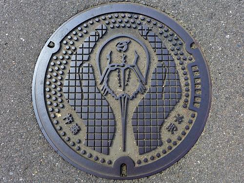 Kitsuki Oita, manhole cover (大分県杵築市のマンホール)