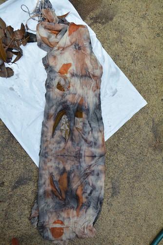 07.Mar.16 Unbundling the dyed dress