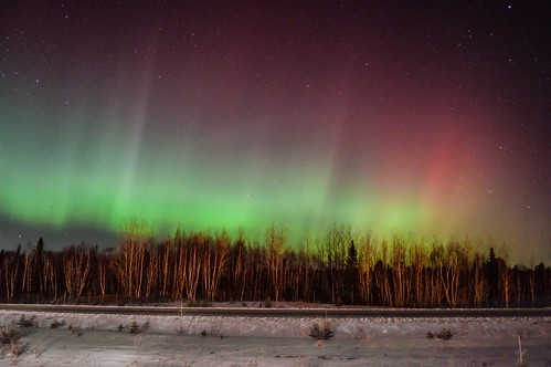 Had to stop on the side of the highway, the sky literally exploded with Aurora. Between Allardville and Bathurst NB Canada  Mar 6 2016