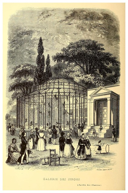 005-Galeria de los simios-Le Jardin des plantes description et murs des mammifères..1842-Pierre Boitard