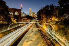 Train at night - Potts Point / Woolloomooloo