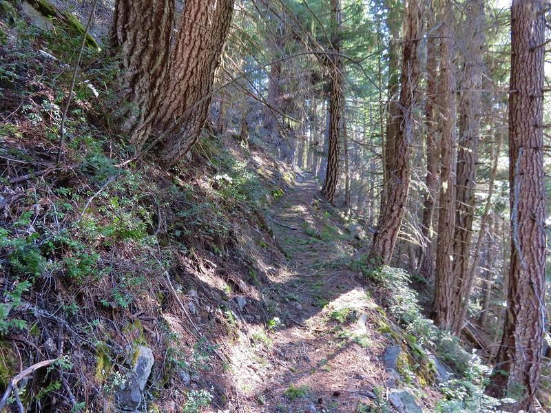 Tamanawas Tie Trail