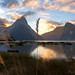 Milford Sound Grassy Sunset by Panorama Paul