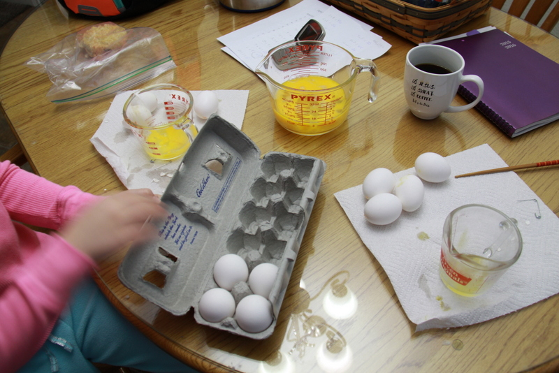 blow eggs (3)