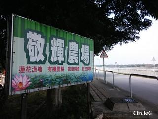 CircleG 遊記 元朗 南生圍 散步 生態遊 一天遊 香港 (28)