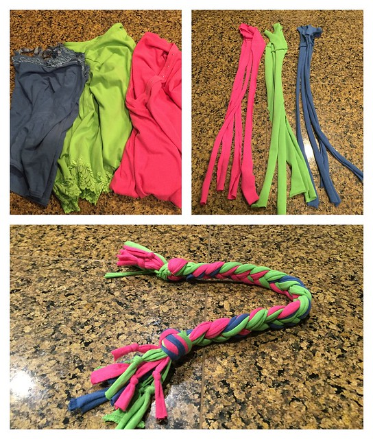 DIY Rope Toy