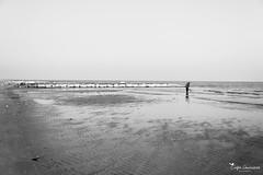 Il mare. L'inverno.