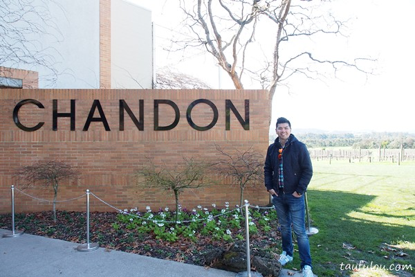 Chandon (25)