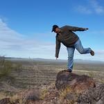 Desert Balance