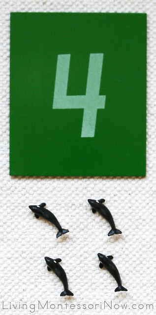 Miniature Killer Whale Cards and Counters Layout