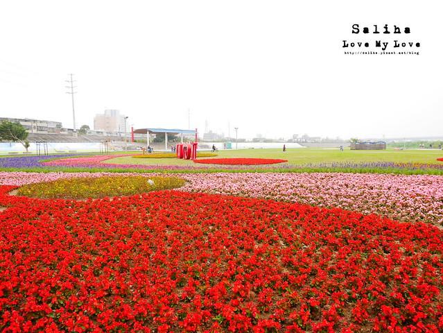 社子島溼地水鳥自行車道 (13)